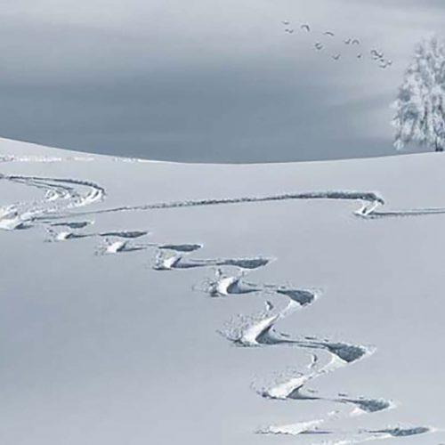 Foto de huella en la nieve